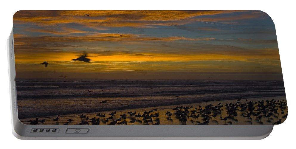 Beach Morning Sunrise Ocean Bird Birds Seagulls Gull Gulls Sand Water Wave Waves Cloud Sky Portable Battery Charger featuring the photograph Joyful Gathering by Andrei Shliakhau