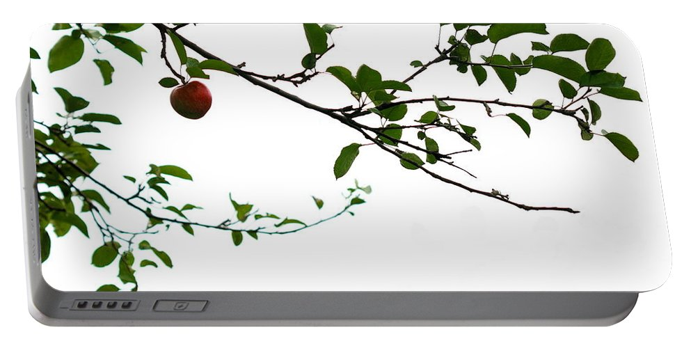 Adam And Eve Portable Battery Charger featuring the photograph Juicy  A Tempting Photograph Of A Tasty Ripe Red Apple On A Tree by Angela Rath