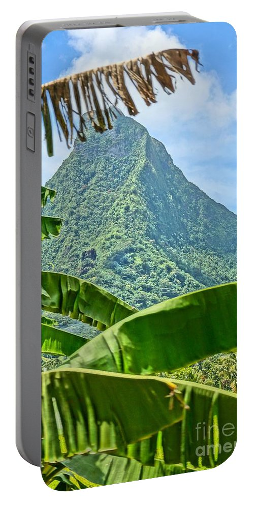 Jungle Portable Battery Charger featuring the photograph Jungle Within by Ivana Kovacic