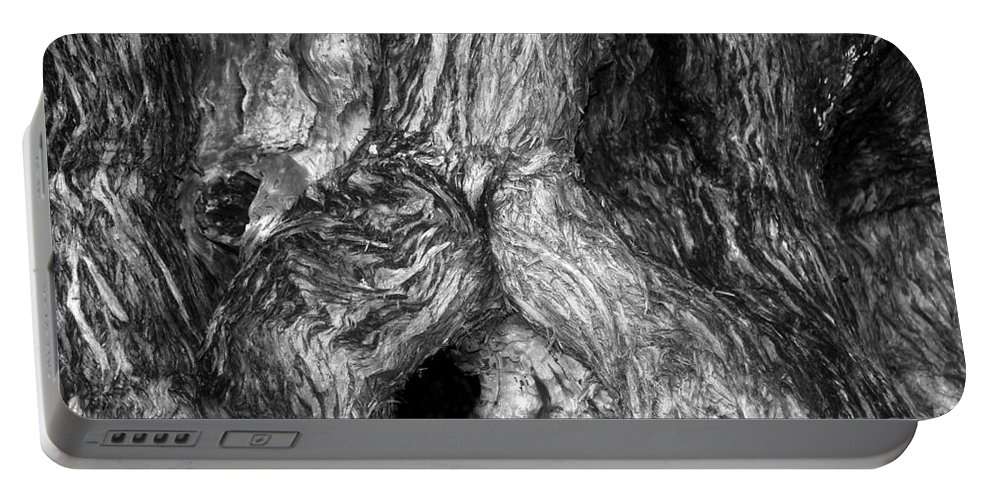 Man Portable Battery Charger featuring the photograph Juniper Man by David Lee Thompson