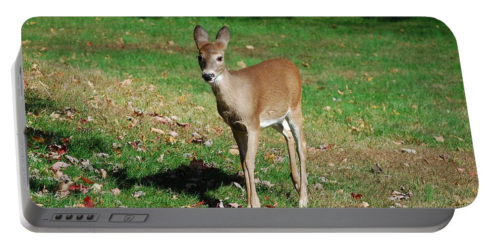 Deer Portable Battery Charger featuring the photograph Just A Baby by Lori Tambakis
