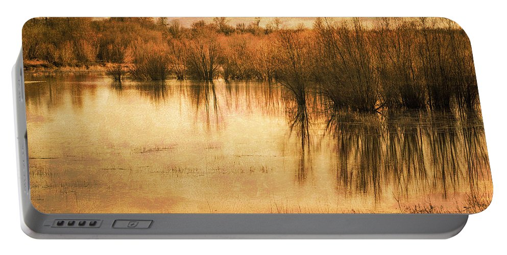 Sauvie Island Portable Battery Charger featuring the photograph Just After Dawn by Don Schwartz