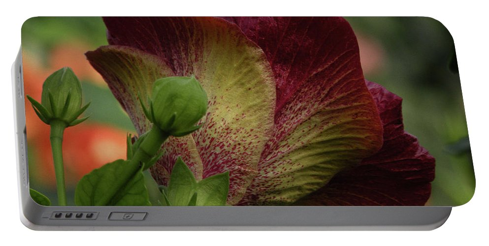 Flower Portable Battery Charger featuring the photograph Just Beautiful by Trish Tritz