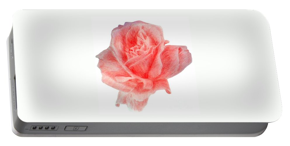 Drawing Flower Rose Colored Pensils Paper Portable Battery Charger featuring the drawing Just Rose by Nadi Sabirova