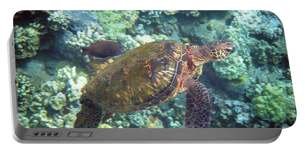 Sea Turtle Portable Battery Charger featuring the photograph Just Tagging Along by Angie Hamlin