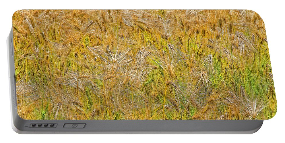 Abstract Portable Battery Charger featuring the photograph Just Wheat by Timothy Flanigan and Debbie Flanigan Nature Exposure