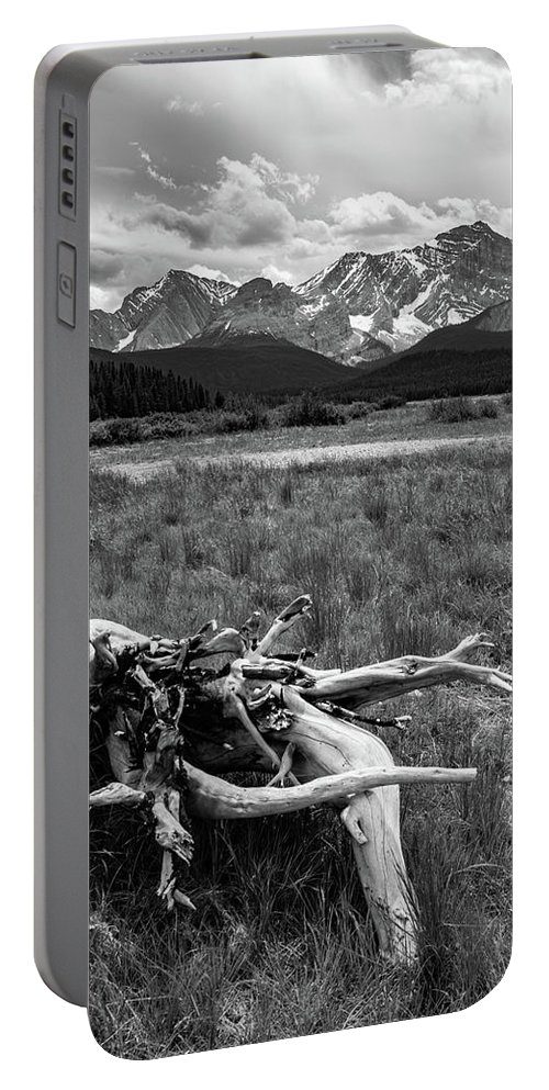 Mountains Portable Battery Charger featuring the photograph Kananaskis Driftwood by Shelly Priest