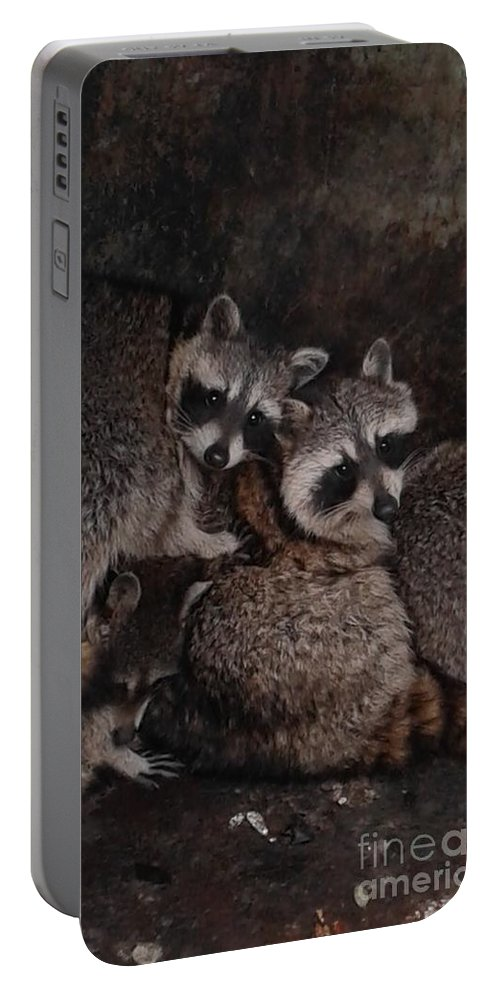 Wild Portable Battery Charger featuring the photograph Keep Warm by Joseph Ott