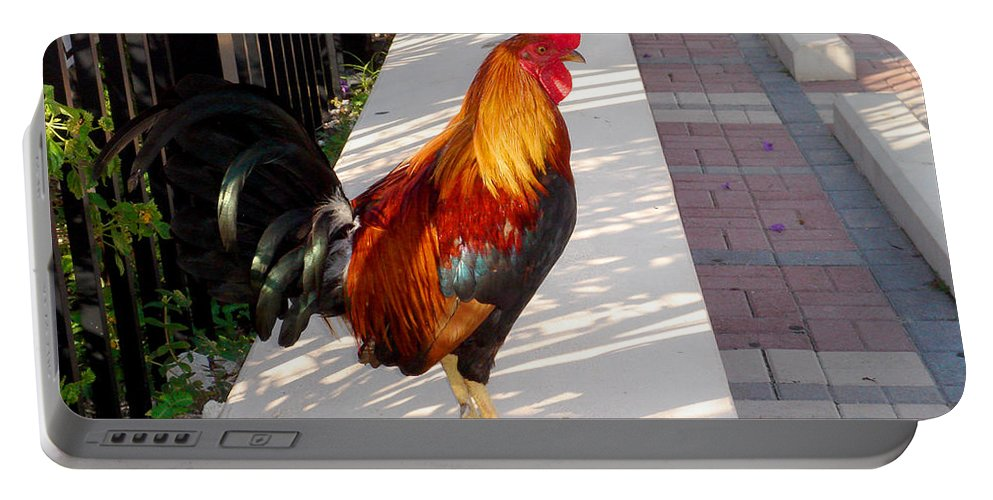 Photography Portable Battery Charger featuring the photograph Key West Rooster by Susanne Van Hulst