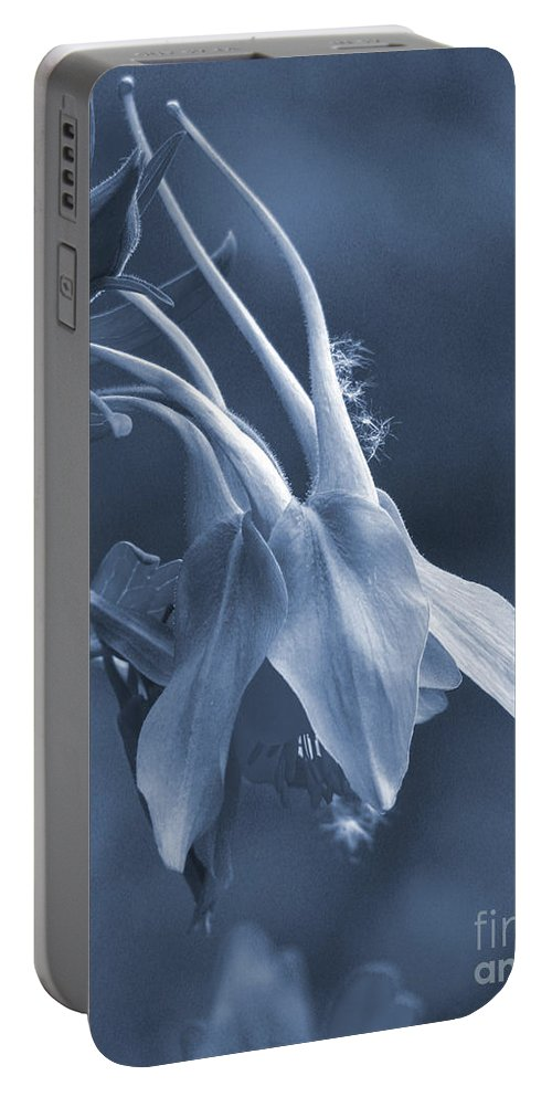 Roselynne Broussard Fine Art Portable Battery Charger featuring the photograph Killing Me Softly by Roselynne Broussard