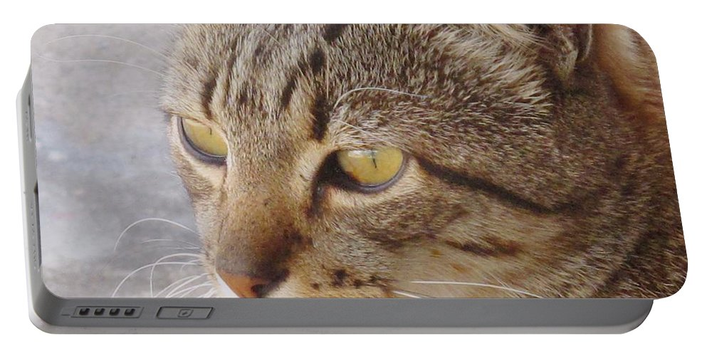 Cat Portable Battery Charger featuring the photograph King Cat by Ian MacDonald