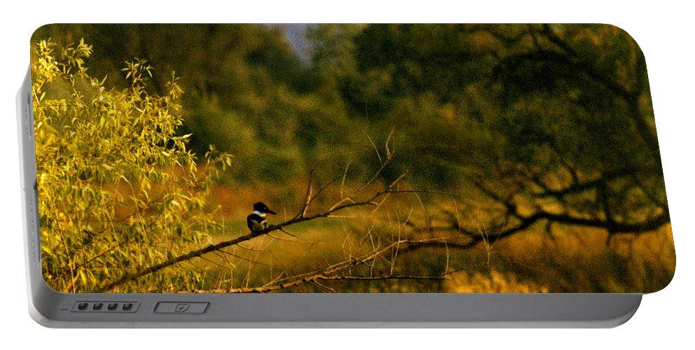 Landscape Portable Battery Charger featuring the photograph King Fisher by Steve Karol