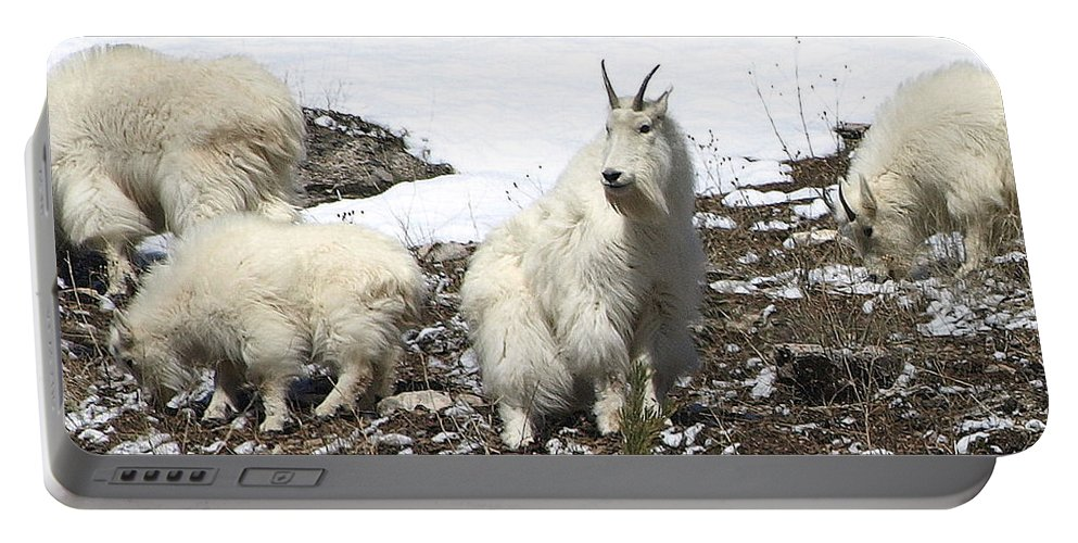 Mountain Goats Portable Battery Charger featuring the photograph King Of The Hill by DeeLon Merritt
