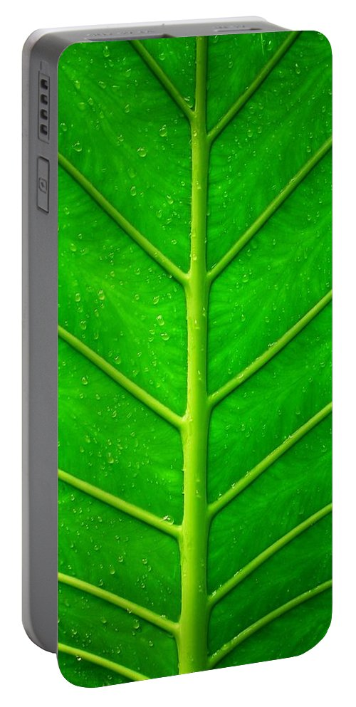 Plant Portable Battery Charger featuring the photograph Kiss The Rain ... by Juergen Weiss
