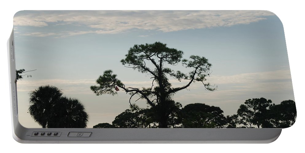 Kite Portable Battery Charger featuring the photograph Kite In The Tree by Rob Hans
