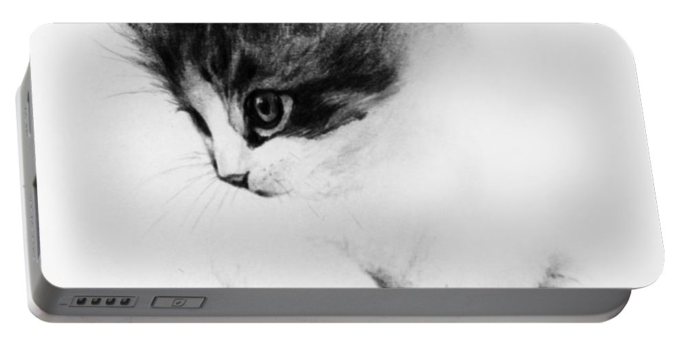 Kitten Portable Battery Charger featuring the drawing Kitty by Rachel Christine Nowicki