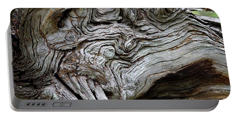 Knotty Tree Portable Battery Charger featuring the photograph Knotty Tree by Christiane Schulze Art And Photography