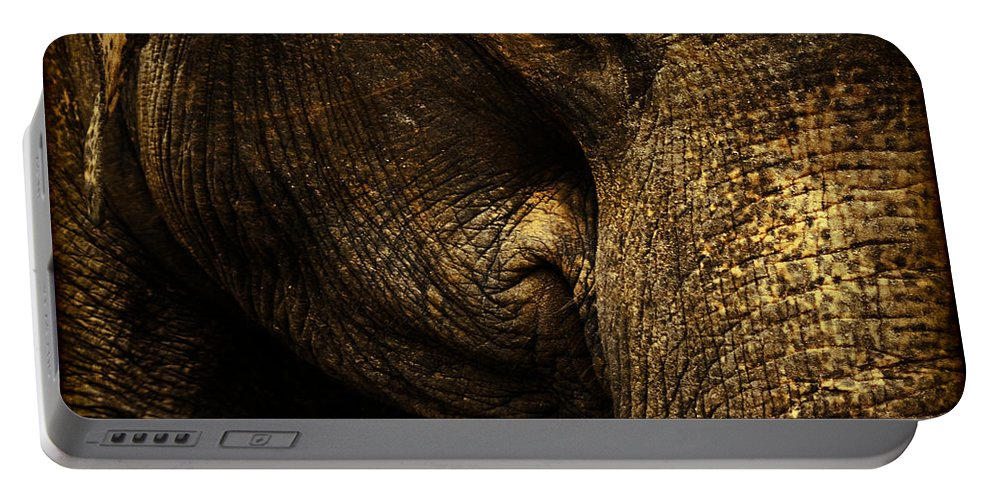 Elephant Portable Battery Charger featuring the photograph Knowing by Andrew Paranavitana