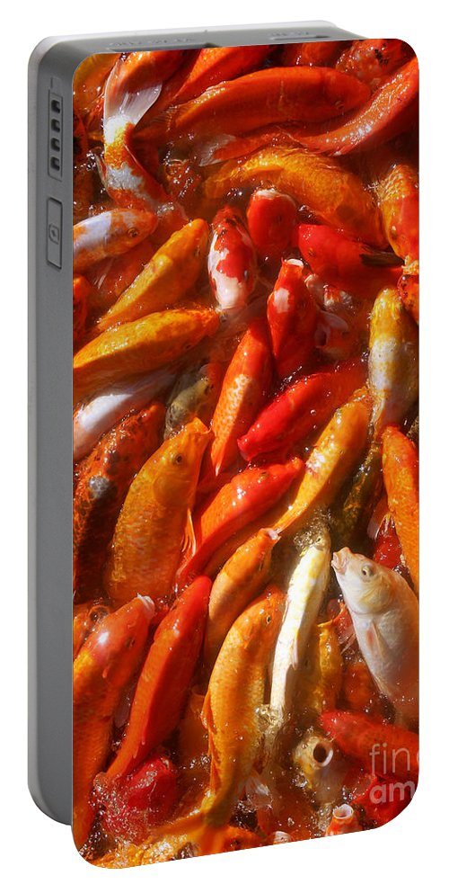 Koi Portable Battery Charger featuring the photograph Koi Fishes In Feeding Frenzy Upward by Christopher Shellhammer