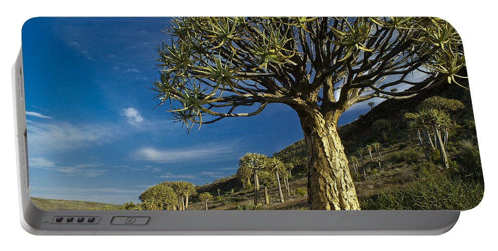 Africa Portable Battery Charger featuring the photograph Kokerboom by Michele Burgess