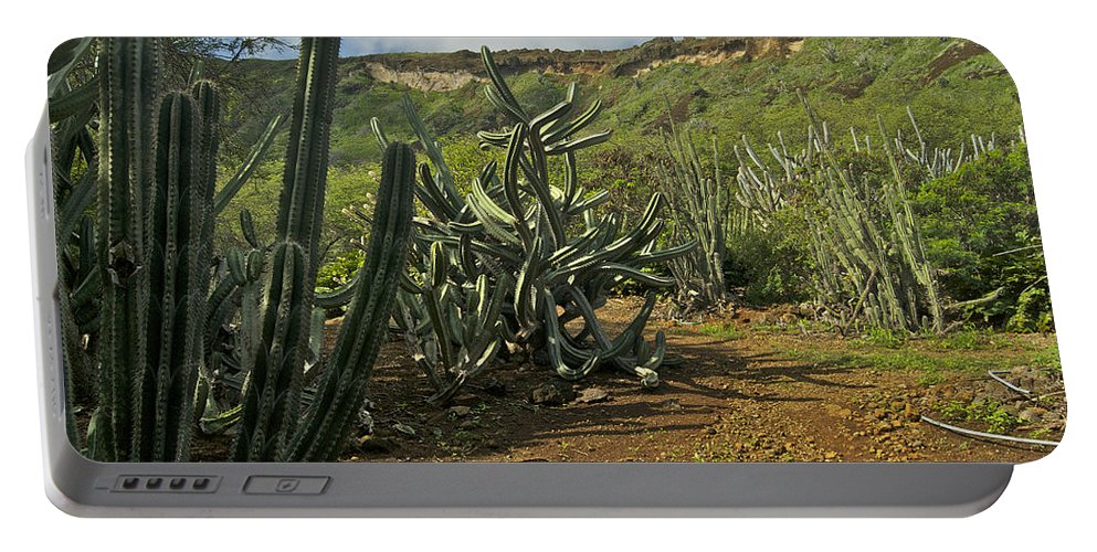Landscape Portable Battery Charger featuring the photograph Koko Caldera by Michael Peychich