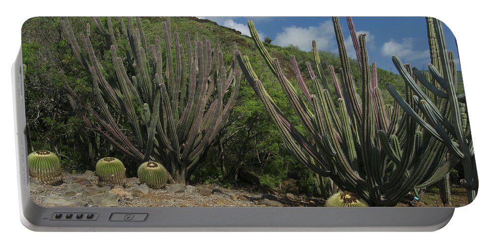 Landscape Portable Battery Charger featuring the photograph Koko Crater Cacti by Michael Peychich