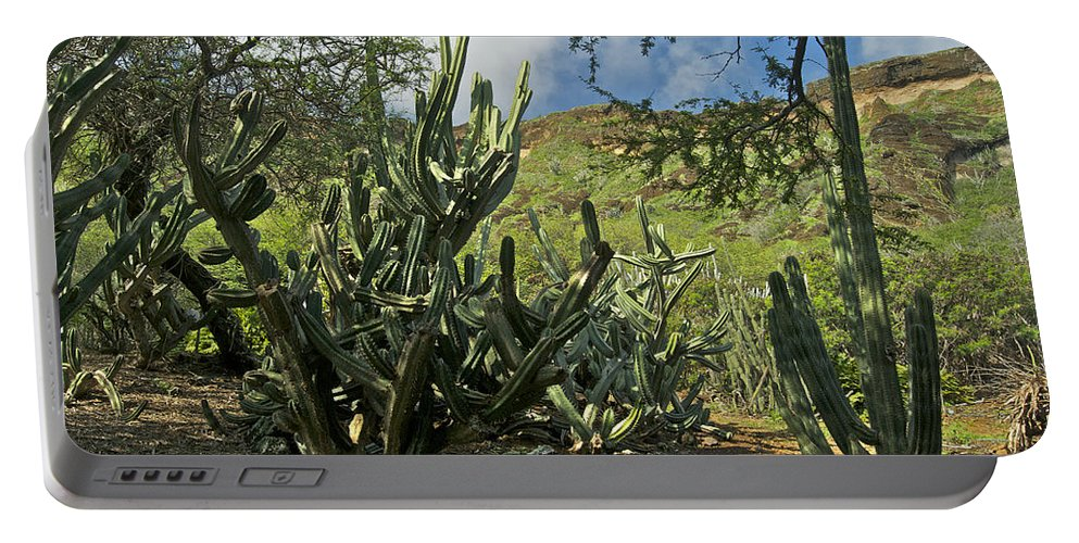 Landscape Portable Battery Charger featuring the photograph Koko Crater by Michael Peychich