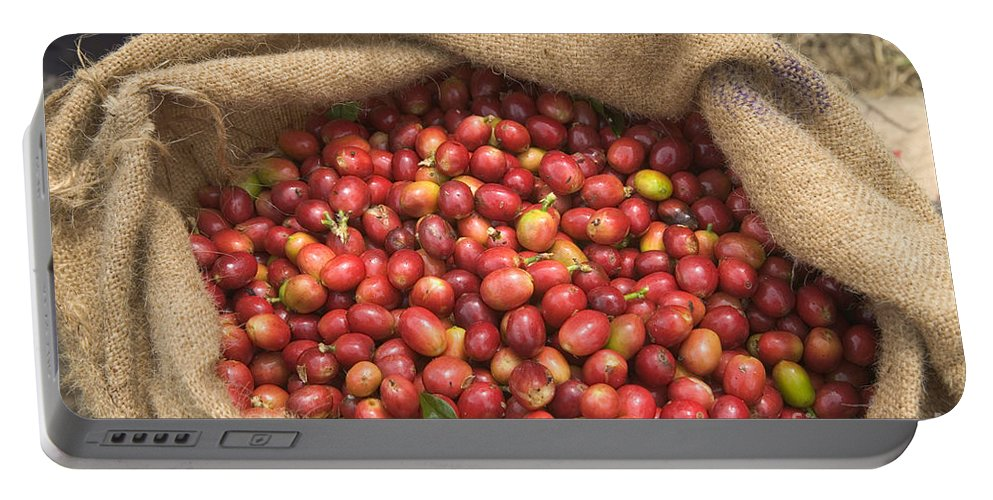 Harvest Portable Battery Charger featuring the photograph Kona Coffee Bean Harvest by Inga Spence