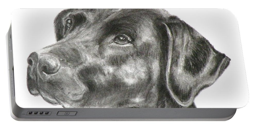 Black Lab Portable Battery Charger featuring the painting Lab Charcoal Drawing by Susan A Becker