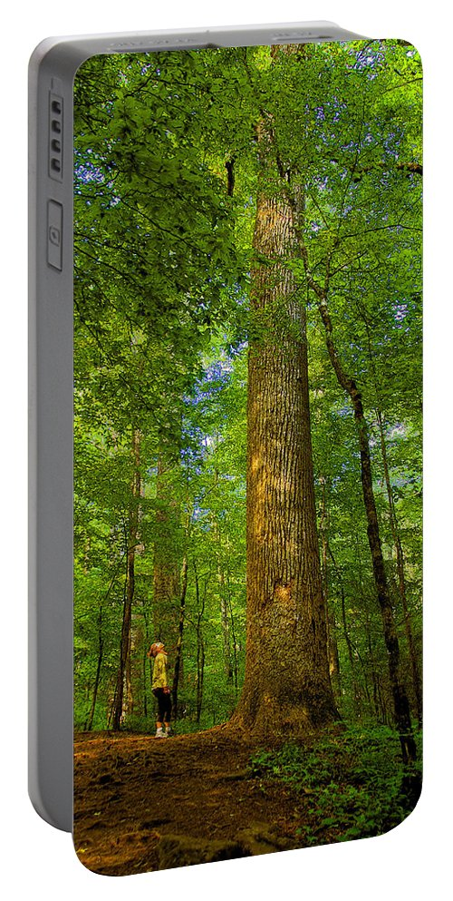 Forest Portable Battery Charger featuring the painting Lady And The Tree by David Lee Thompson