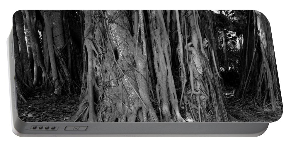 Banyan Trees Portable Battery Charger featuring the photograph Lady In The Banyans by David Lee Thompson
