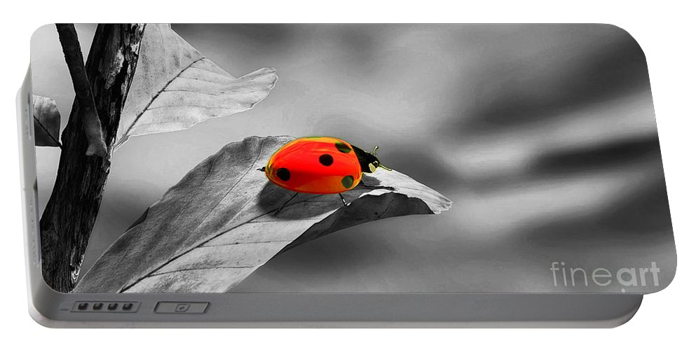 Ladybird Portable Battery Charger featuring the photograph Ladybird by Sebastien Coell