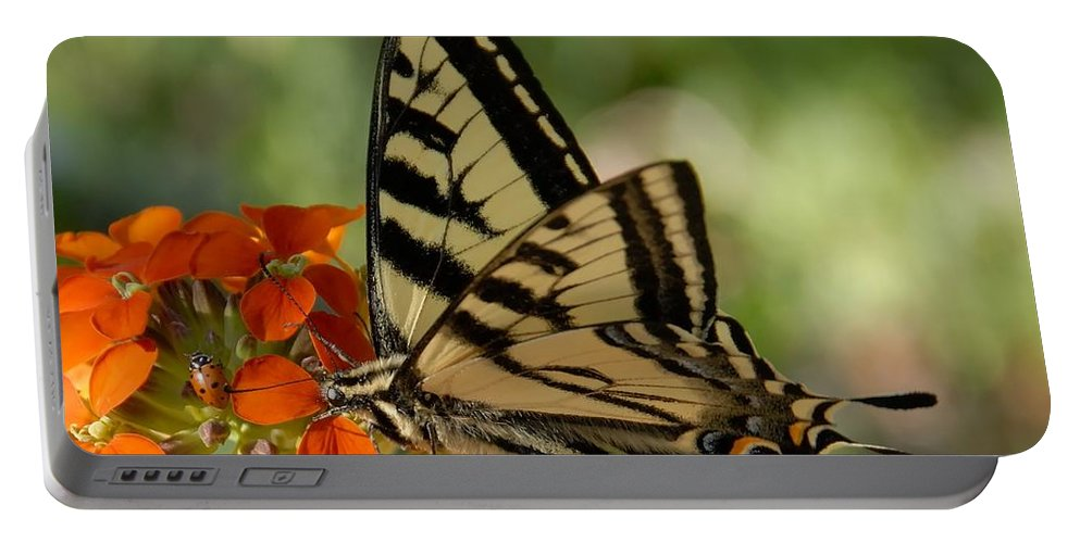 Photography Portable Battery Charger featuring the photograph Ladybug And Tigertail by David Lee Thompson