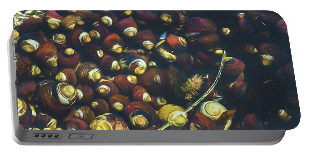 Shell Portable Battery Charger featuring the photograph Laguna Beach Tide Pool Pattern 1 by Scott Campbell