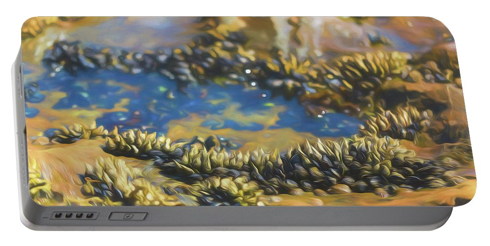 Shell Portable Battery Charger featuring the photograph Laguna Beach Tide Pool Pattern 3 by Scott Campbell