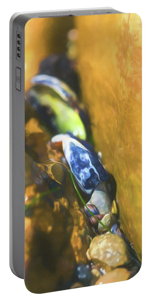 Shell Portable Battery Charger featuring the photograph Laguna Beach Tide Pool Pattern 6 by Scott Campbell