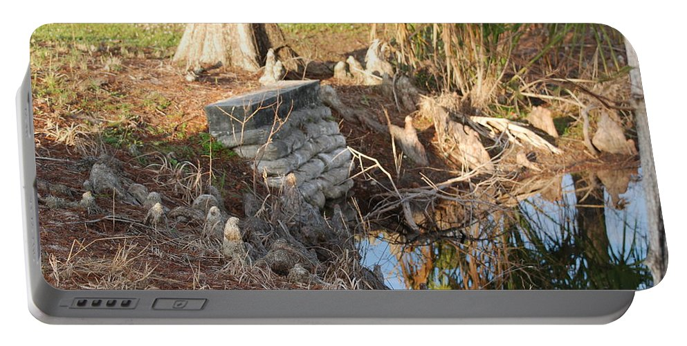 Sunset Portable Battery Charger featuring the photograph Lake Edge by Rob Hans