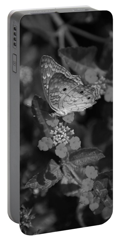 Black And White Portable Battery Charger featuring the photograph Landed by Rob Hans
