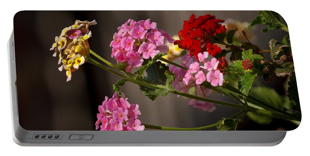 Garden Portable Battery Charger featuring the photograph Lantana by Robert Bales