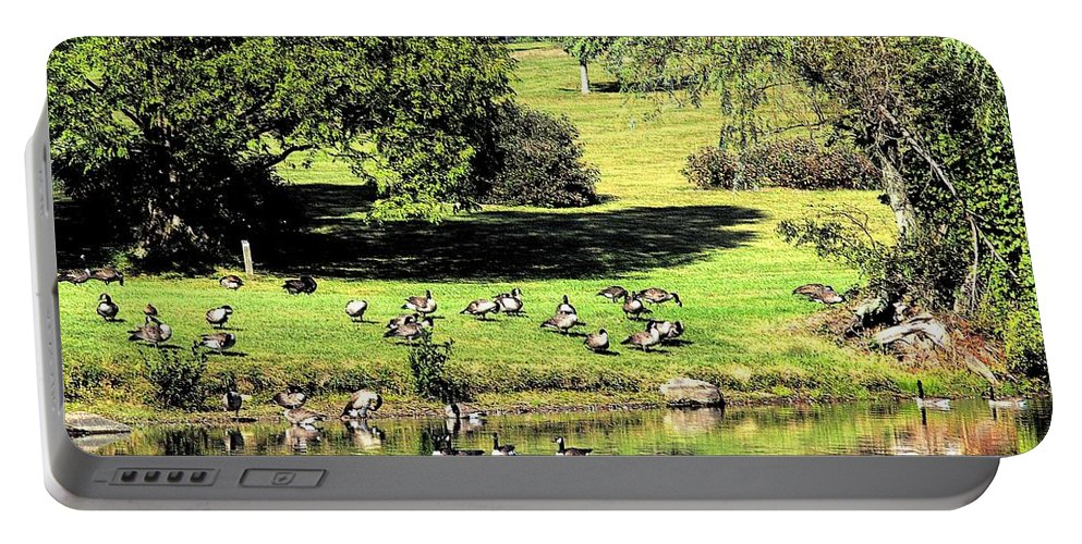 Bird Portable Battery Charger featuring the photograph Last Days Of Summer by Gaby Swanson