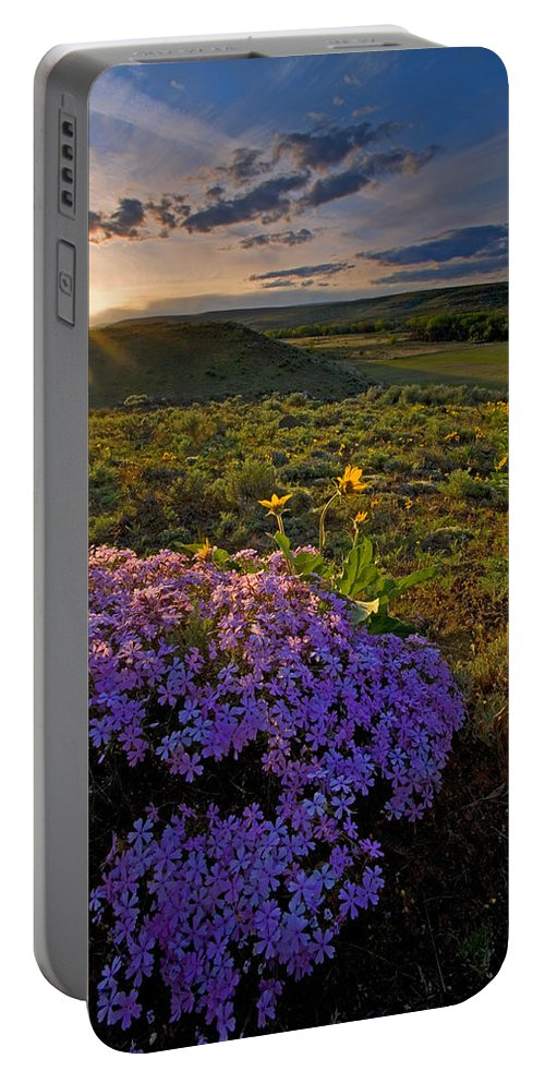 Wildflowers Portable Battery Charger featuring the photograph Last Light Of Spring by Mike Dawson