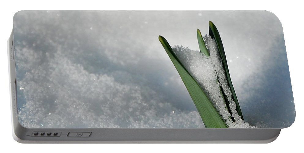 Spring Portable Battery Charger featuring the photograph Late Snow by Lisa Kane