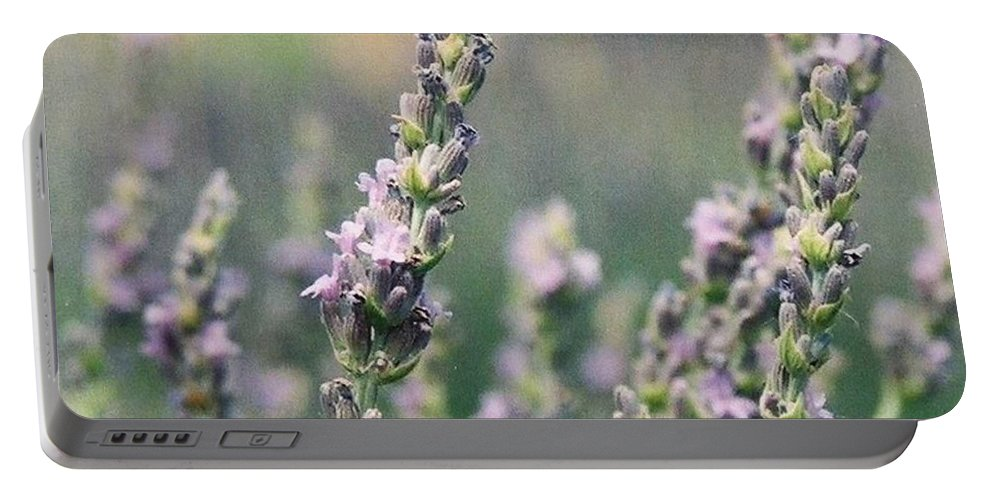 Flowers Portable Battery Charger featuring the painting Lavender by Eric Schiabor