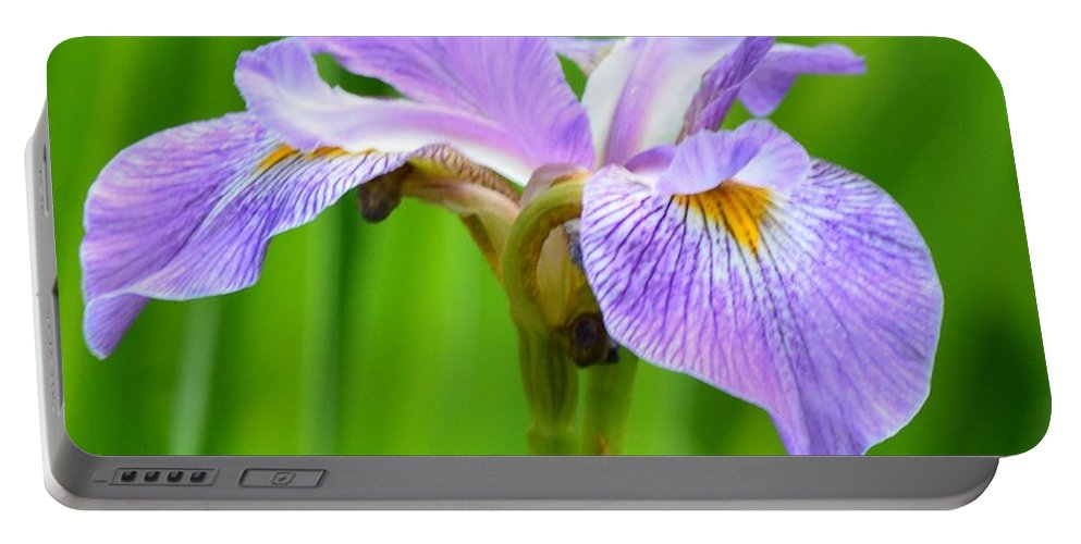 Lavender Iris Portable Battery Charger featuring the photograph Lavender Iris by Maria Urso