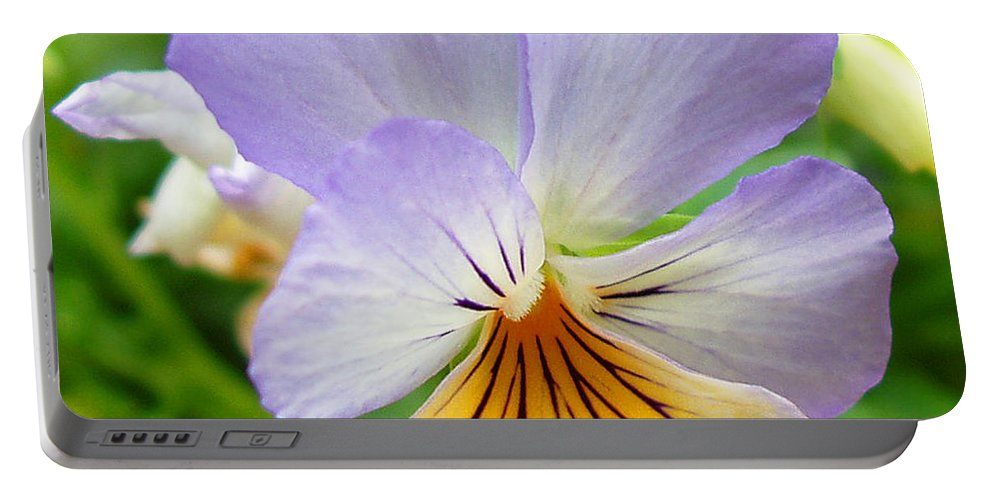 Pansy Portable Battery Charger featuring the photograph Lavender Pansy by Nancy Mueller