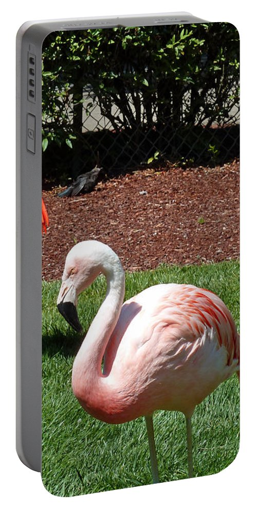 Lawn Ornaments Portable Battery Charger featuring the photograph Lawn Ornaments by Methune Hively