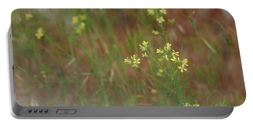 Meadow Portable Battery Charger featuring the photograph Lay In The Meadow by Donna Blackhall