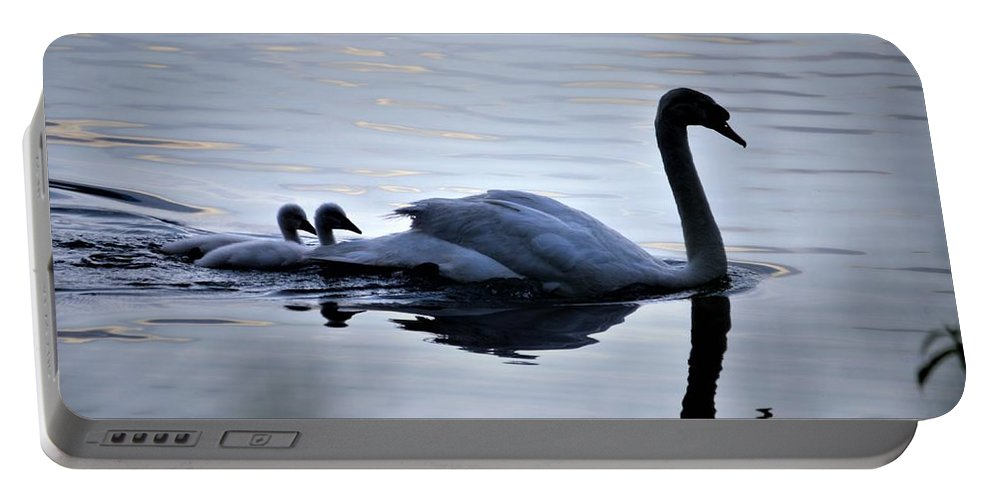 Swans Portable Battery Charger featuring the photograph Leading The Way by CK Brown