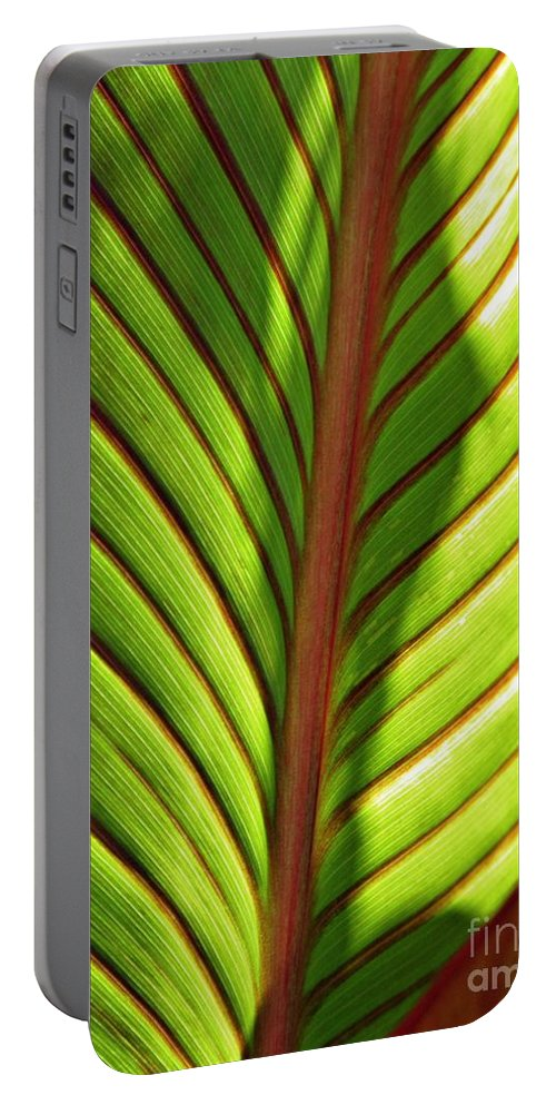 Canna Portable Battery Charger featuring the photograph Leaf Abstract 23 by Sarah Loft