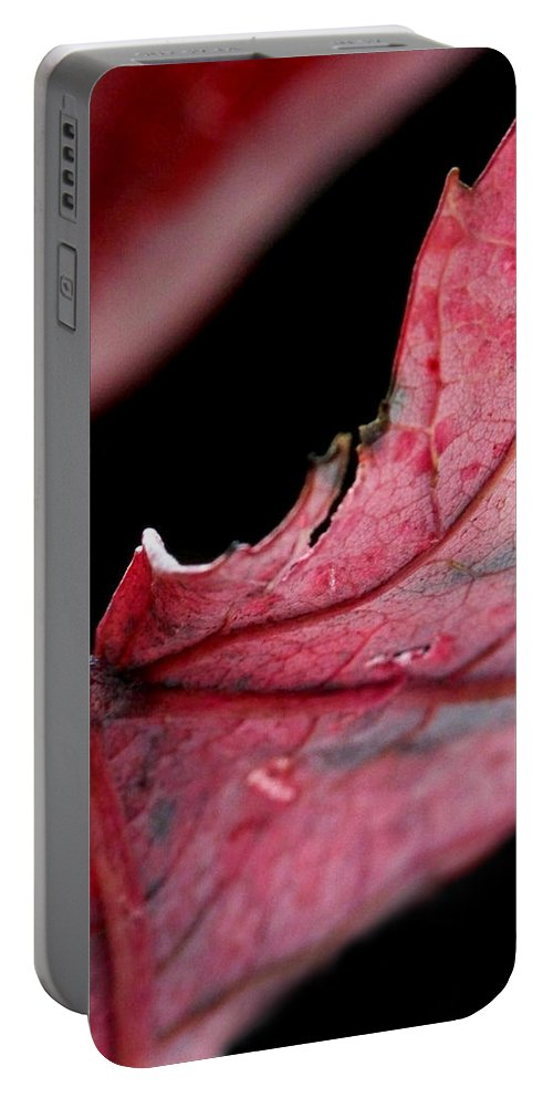 Macro Portable Battery Charger featuring the photograph Leaf Study I by Lauren Radke